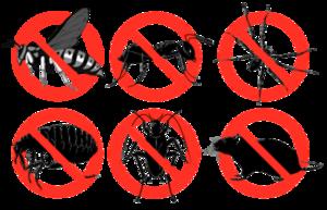 Care sunt cele mai eficiente produse anti-daunatori